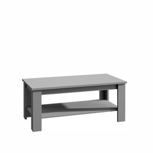 Konferenční stolek PROVANCE ST2 Tempo Kondela Šedá